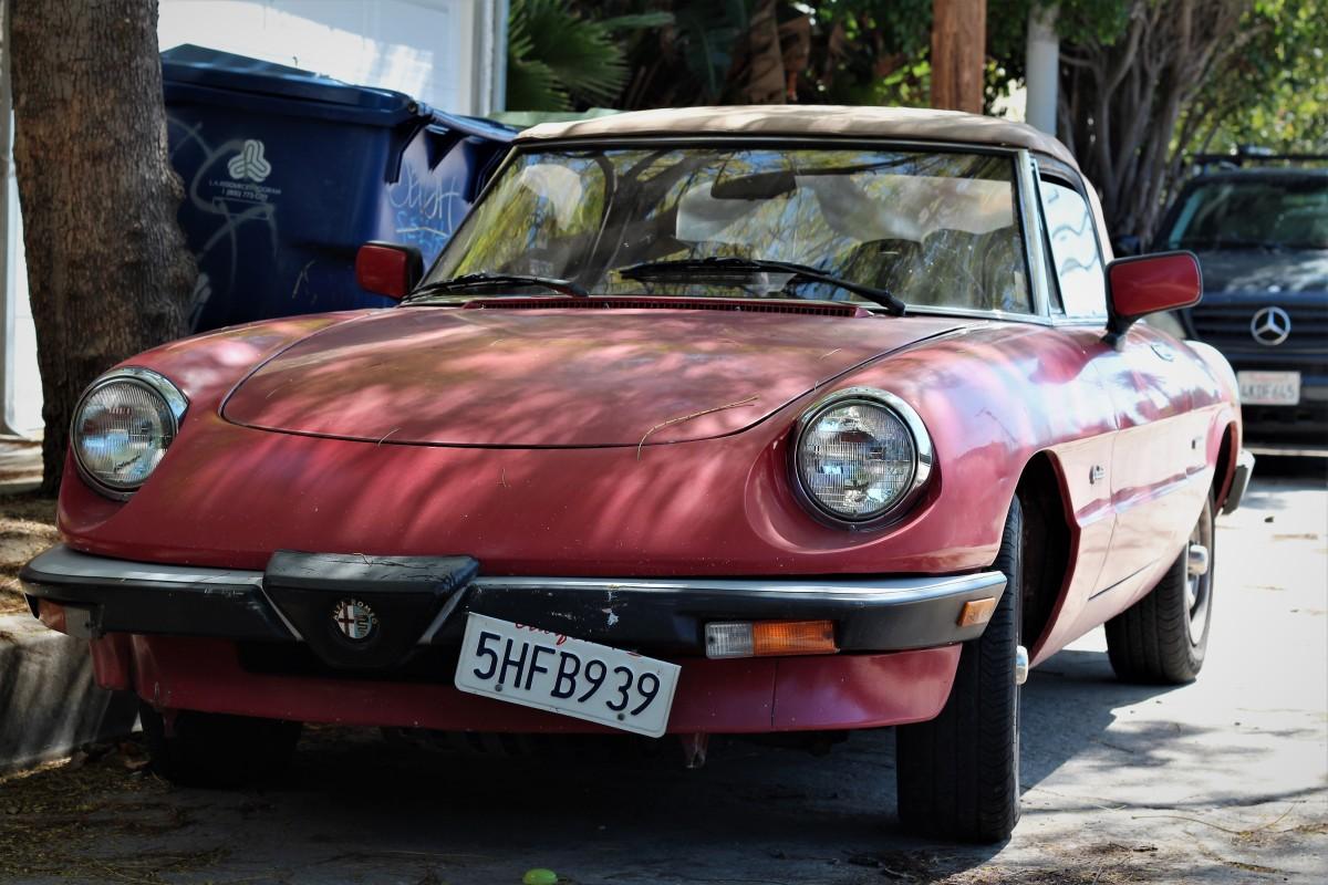 Alfa Romeo Spider Graduate on 1967 Alfa Romeo Spider