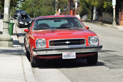 1979 Chevrolet Monza Towne Coupe (8)