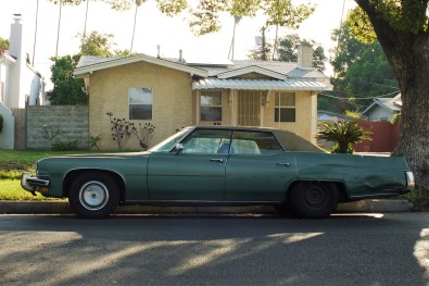 1973 Buick Electra (3)