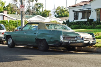 1973 Buick Electra (4)