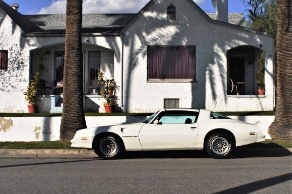 1977 Pontiac Trans Am (2)