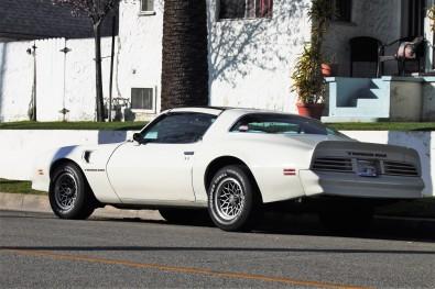 1977 Pontiac Trans Am (3)