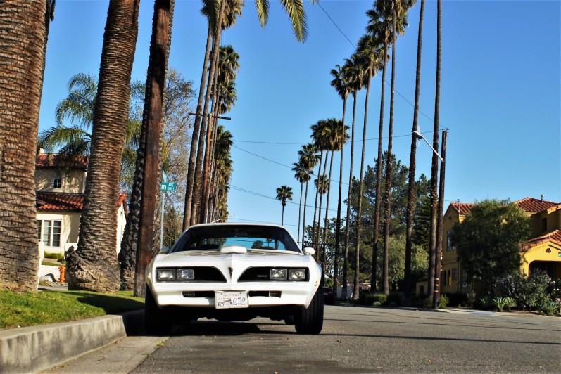 1977 Pontiac Trans Am (4)